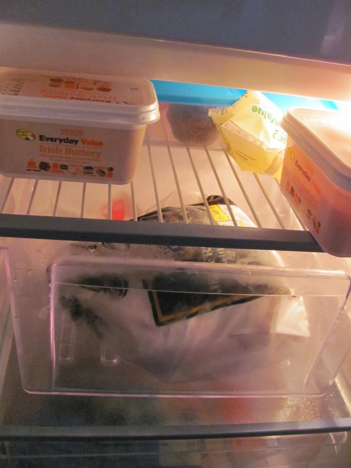 Turkey defrosts in a freezer drawer in Dublin Ireland Thanksgiving 2013