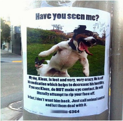 funny dog lost and found sign