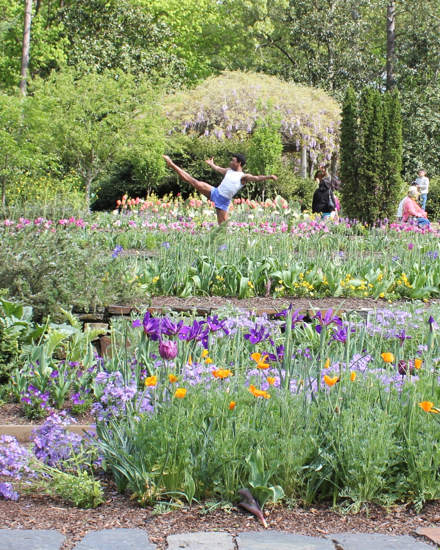 The wildlife garden in the h l blomquist garden of native plants -  I Wish I Could Say This Was Me Frolicking Amongst The Flowers But Well It S A Slightly More Talented Performer Than Myself