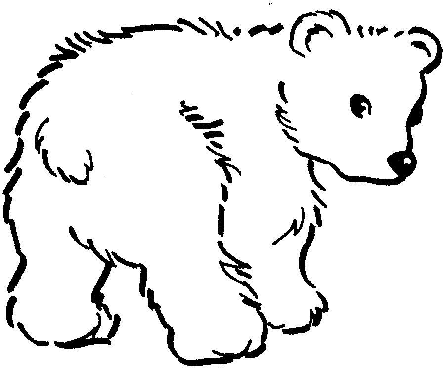 Desenhos_colorir_urso Ursinho Uso Usa Ursa Colorir Pintar Desenho