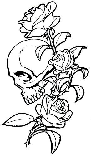 Skull Tattoos Designs Top Edition 20