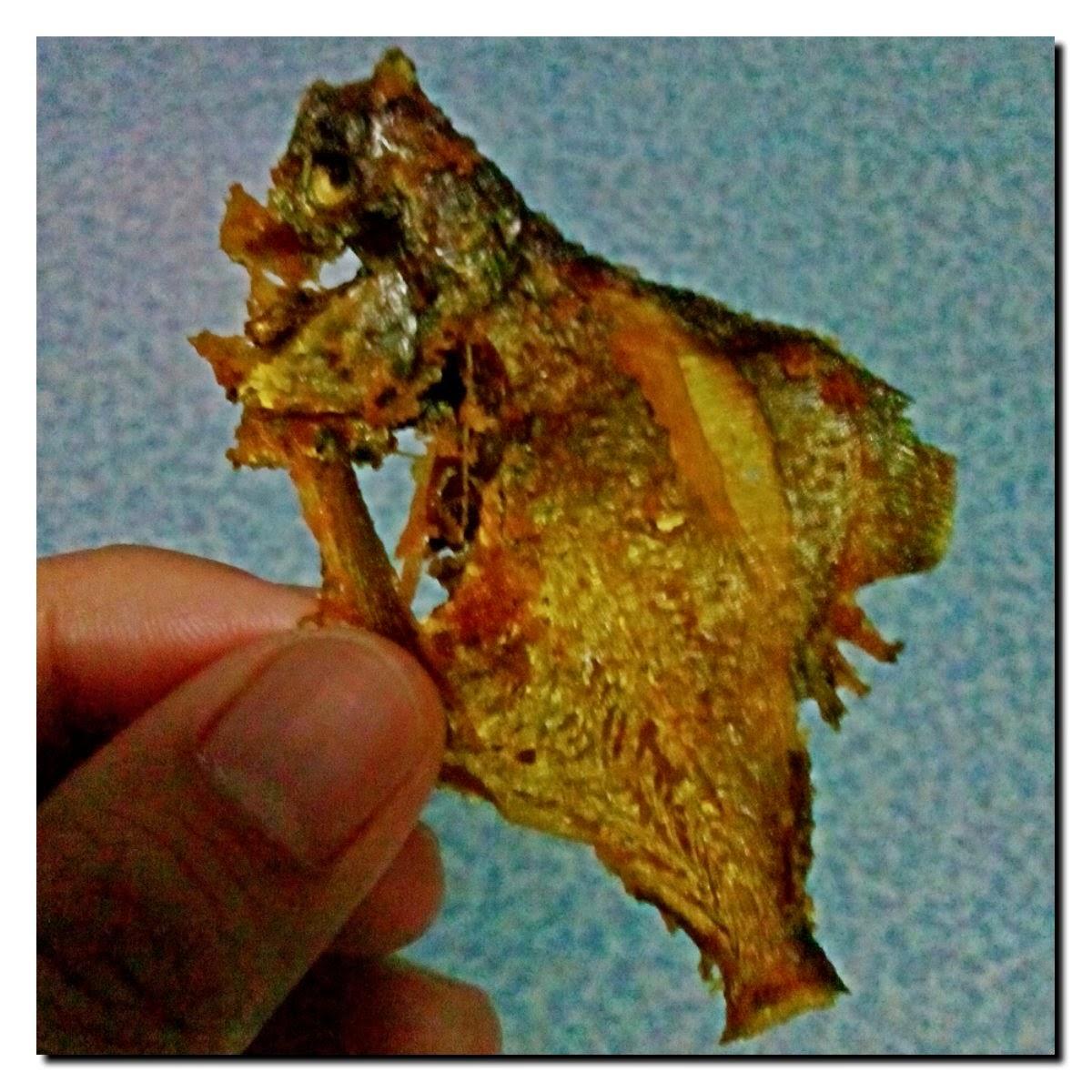 Tercekik Tulang Ikan
