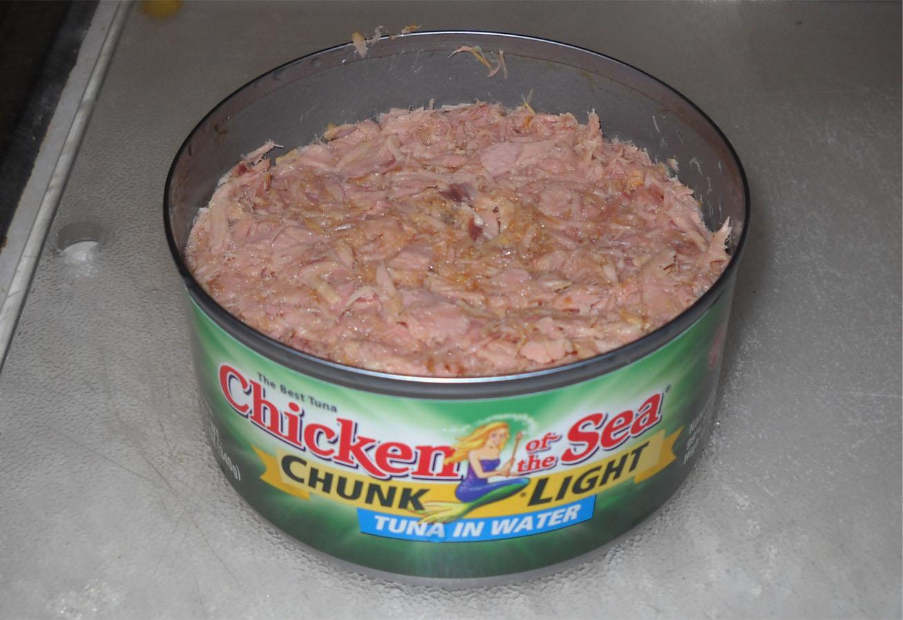 Voodoo warrior i didn 39 t buy tuna soup dammit for Tuna fish brands
