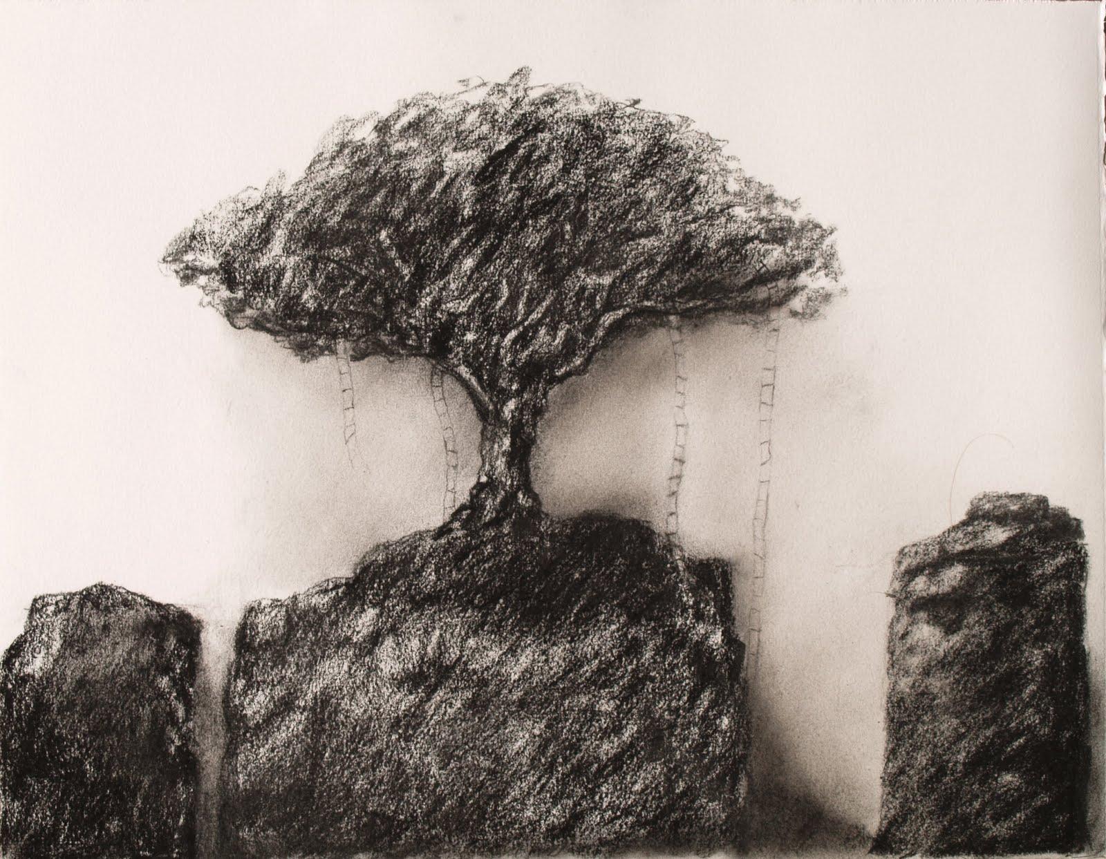 l'arbre aux échelles