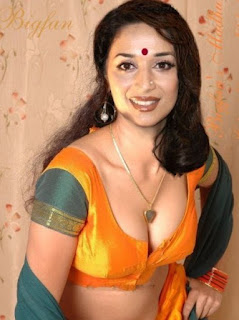 madhuri dixit in blouse