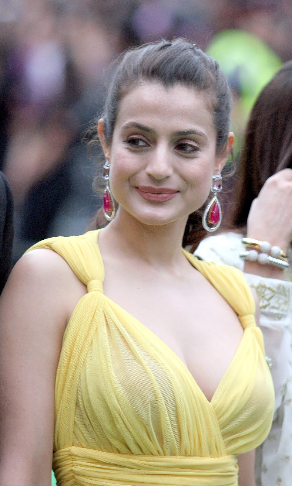 Bollywood Girls Amisha Patel Down Blouse Boobs