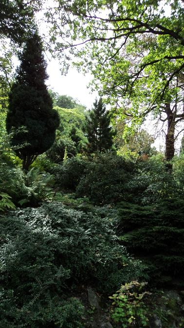 La f erailleuse le jardin botanique universitaire de prague for Jardin universitaire