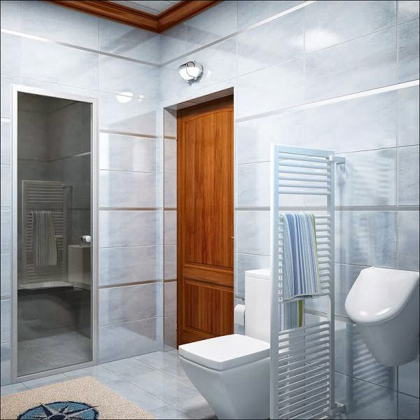 Very small bathroom decor ideas bathroom decor for Very small bathroom designs with shower