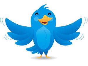 La red de microblog Twitter quiere que sus usuarios estén tranquilos a la hora de utilizar el servicio. Por ello recomienda seguir una serie de pasos para mantener segura su cuenta. Además, recuerda que los intentos de 'hackeo' a una cuenta de Twitter son «extremadamente raros» y alerta sobre las amenazas de 'phishing'. La preocupación de los usuarios por mantener segura su cuenta en Twitter sigue estando presente. Al igual que ha ocurrido en otras ocasiones con cuentas de correo, los usuarios de la red de microblog temen que sus datos sean comprometidos por terceros. Twitter alerta sobre todo de