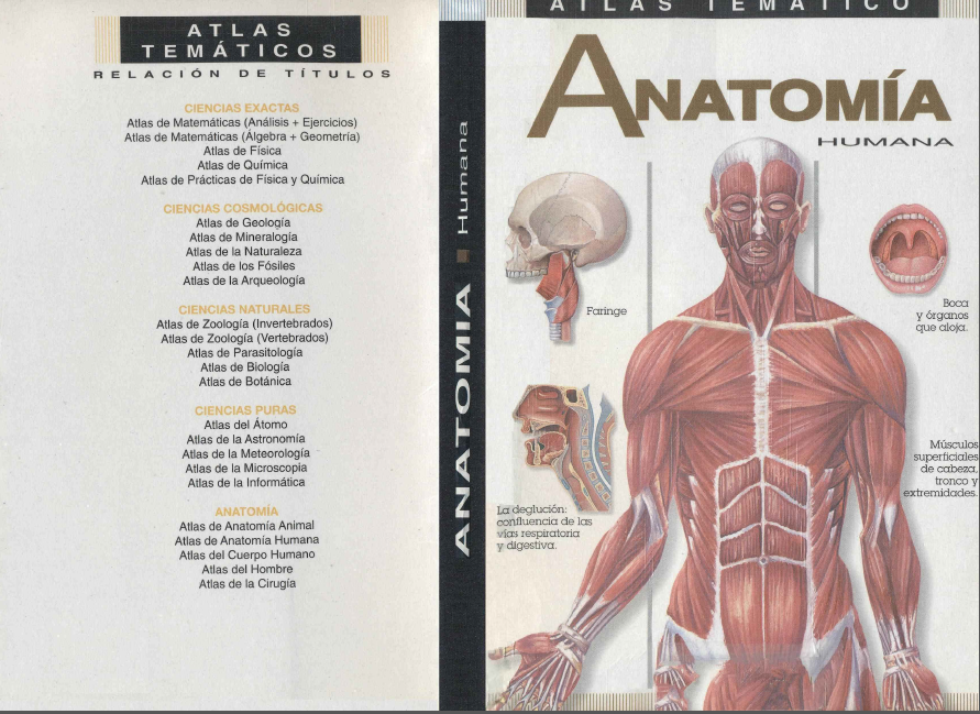 Zona 50 Telesecundarias: Atlas temático de anatomía