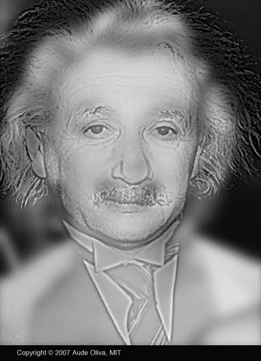 Prueba tu vista ¿A quién ves en esta imagen, a Albert Einstein o a Marilyn Monroe?