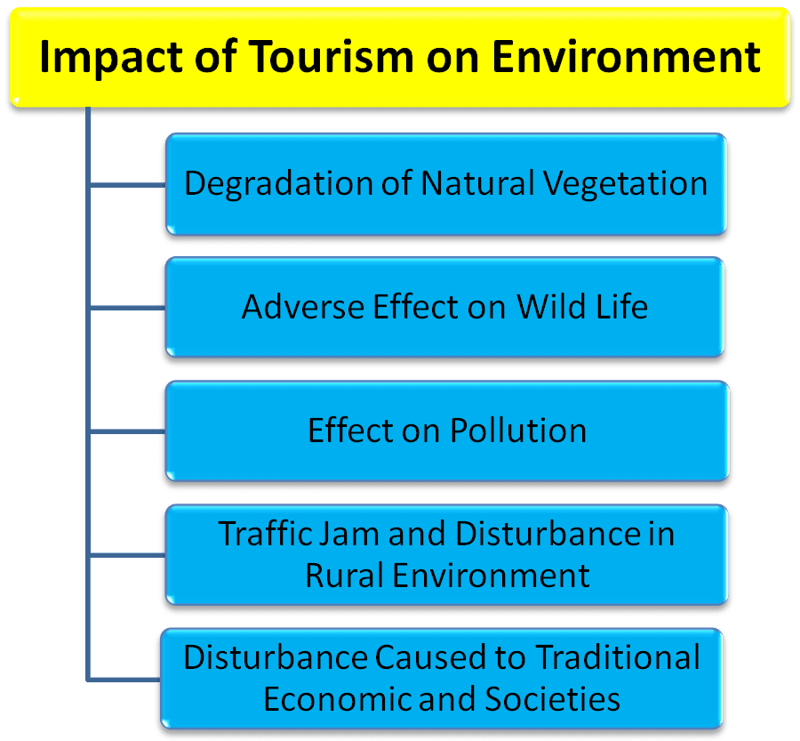 essay on impact of industries on environment