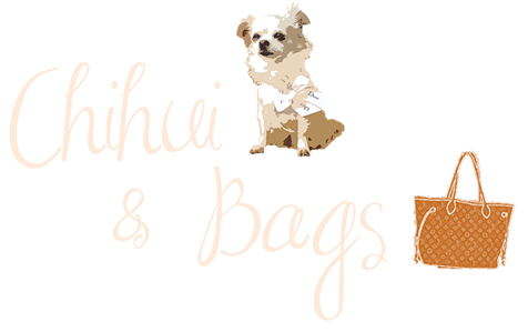 Chihui & bags