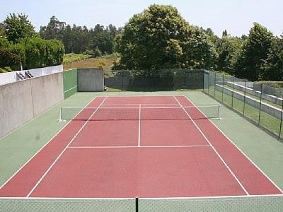 Biocuriosidades: Una pista de tenis en el intestino