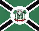 Bandeira de Altamira