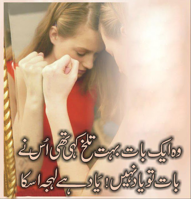 2 line urdu poetry shair