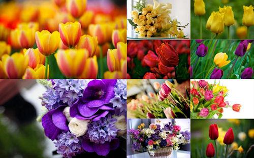 Especial Día de las Madres; Imágenes de flores para escribir mensajes originales a su madrecita 10 de mayo