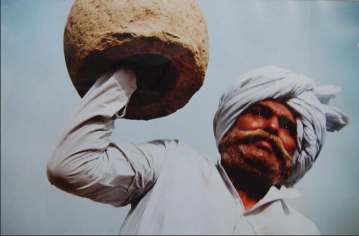 Desi Haryanvi Tau