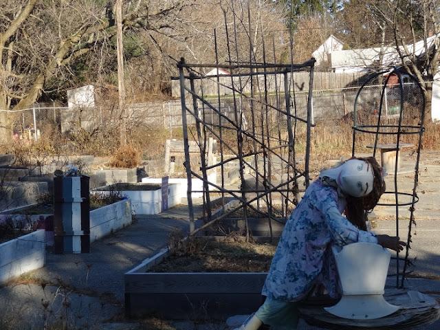 Bangor Community Garden, scarecrow, Essex Street, Maine