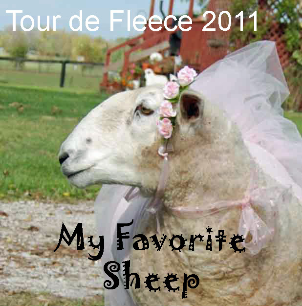 2011 Tour de Fleece