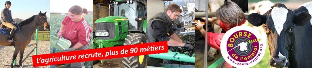 L'emploi et la formation en agriculture