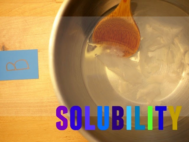 Preschool Science- Testing toilet paper solubility
