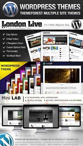 Multiple Premium WordPress Theme