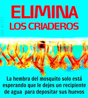 ¿Quieres prevenir el Dengue y la fiebre  Chikungunya?