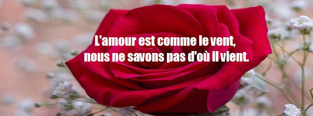 Citation amour sur photo