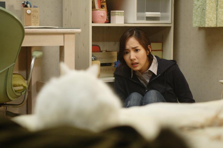 Про корейского кота из фильма ужасов (The Cat 2011)