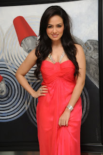 Sana Khan Birthday Celetion Pictures 2013 (32).jpg
