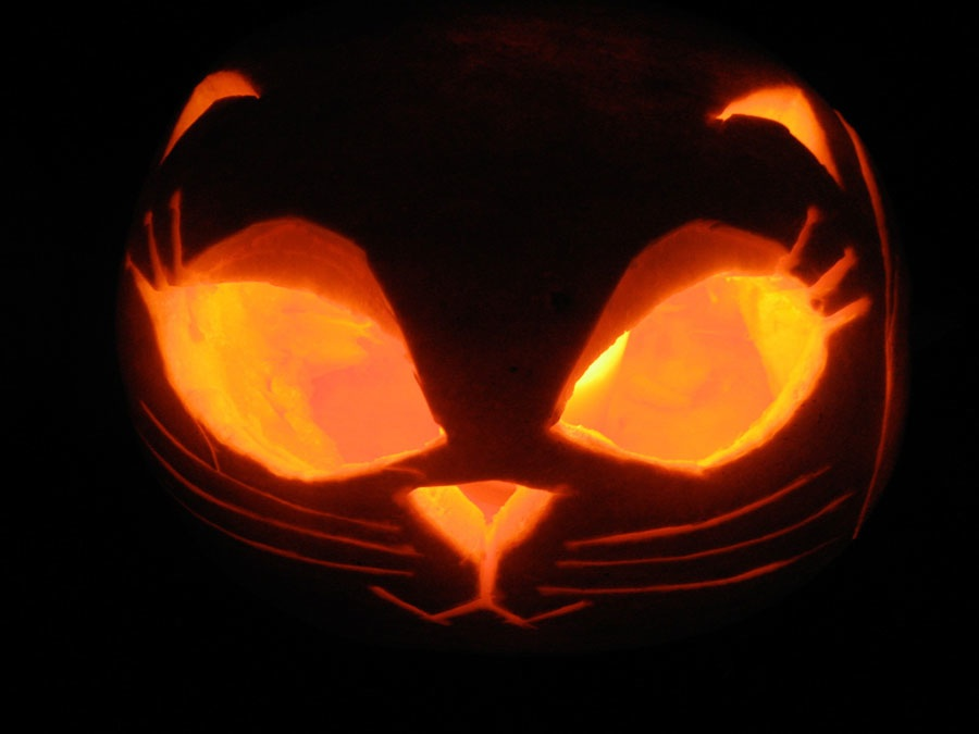 Paper bag string halloween cat carved pumpkins