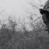 "Video: Joey Bada$$ ""Paper Trails"""