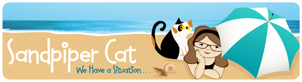 Sandpiper Cat Is A Blog Inspired By Pregnant Foster That Miscarried Her Kittens The Was Brought From Rescue Foundation