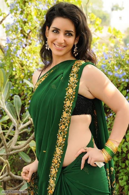 Actress+Kriya+Latest+Hot+Spicy+Stills+in+Green+Saree+(1)