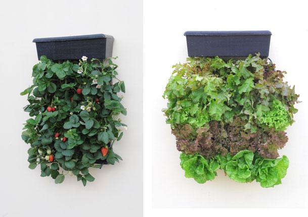 Jardinitis vertigarden construye tu propio jard n vertical for Riego jardin vertical