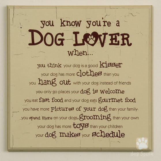 dog tricks made easy how to know that you are a dog lover