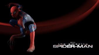 #25 Spider-man Wallpaper