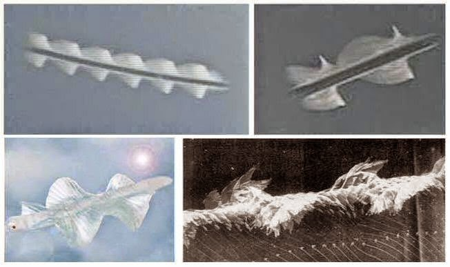 Rods: Unidentified Flying Creatures