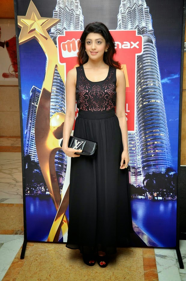 SIIMA Awards Press Meet Photos 2014