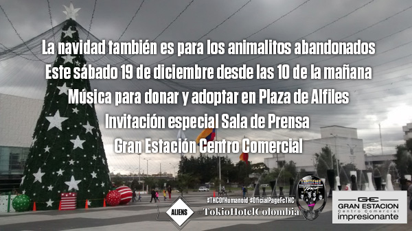 navidad-animales