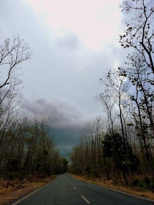 hutan baluran