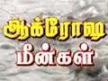 Nijam   Aakrosa Meengal 24 08 2011 Sun Tv