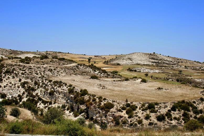 Bushland Larnaca