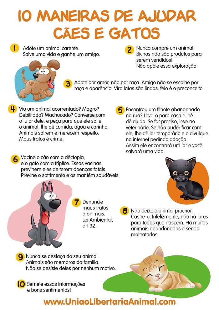 [Imagem: 10-maneiras-de-ajudar-caes-e-gatos.jpg]