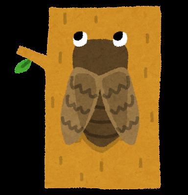 木に止まった蝉のイラスト