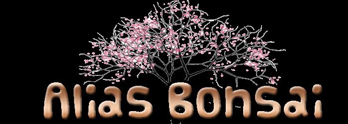 // Pokok Bonsai