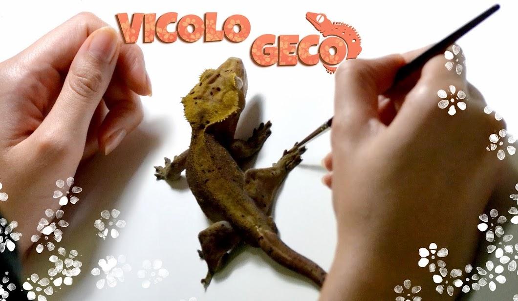 Vicolo Geco