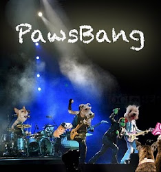 Pwoud Membew of Paws  Bang