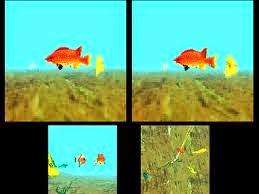 برنامج VidGIF لأخذ لقطات متحركة